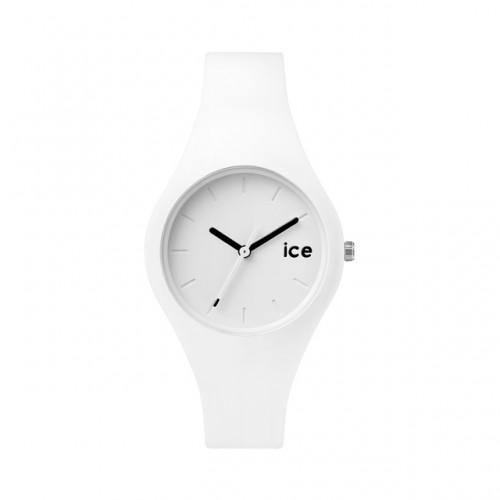 ICE.WE.S.S.14_1